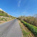 18 febrero 21 Limpieza Camino Galindo (3)