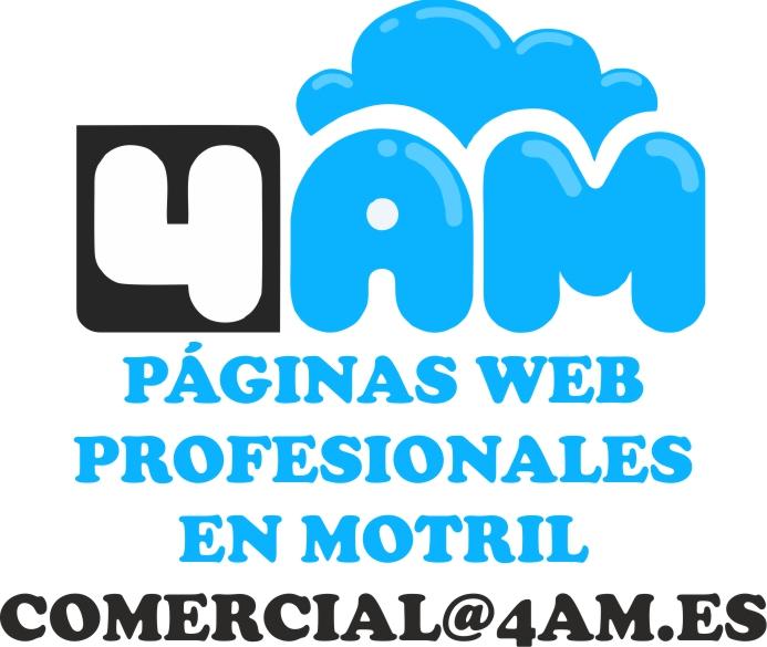 4am paginas web profesionales